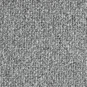 3170072.jpg
