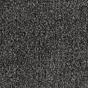 3850076.jpg