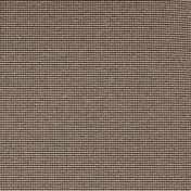 3920028.jpg