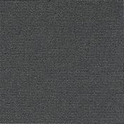 3920074.jpg