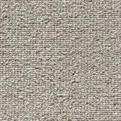 5270016.jpg